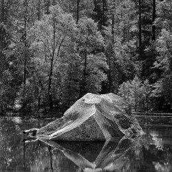 Rock, Mirror Lake, Yosemite 1958