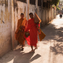 Young Buddhist monks in Cambodia