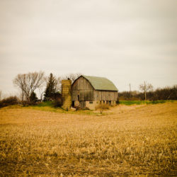 Old Green Barn