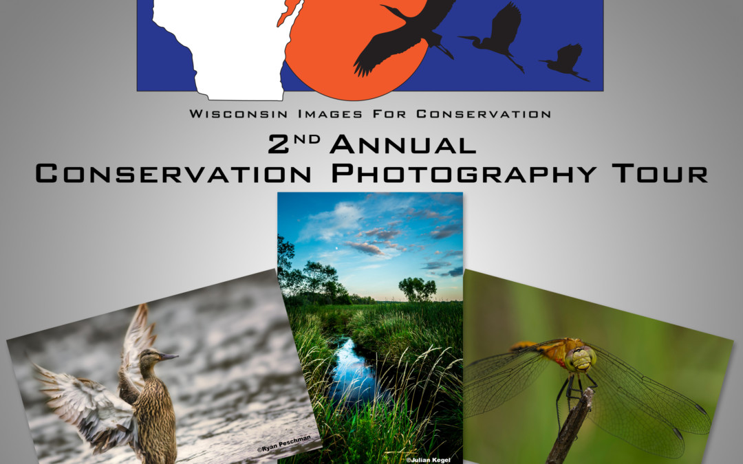 $10,000 in prizes for WIIFC Conservation Photography Tour competition