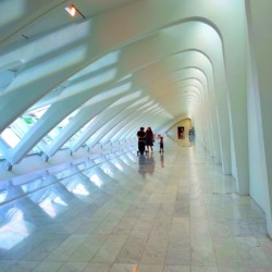 Exploring the Calatrava
