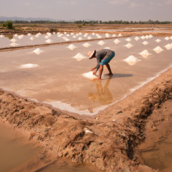 At a salt farm near Kep, Cambodia