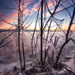 Sunrise with ice #398