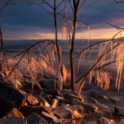 Sunrise with ice #397