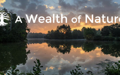 New from The Natural Realm!