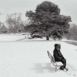 Waiting in winter