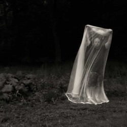 Self portrait with mosquito net